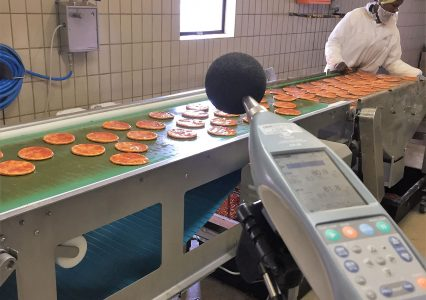 Food industry – manufacturing plant – 2018